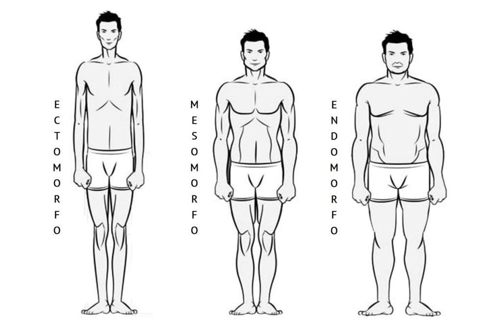 biotipos-cuerpos-hombres